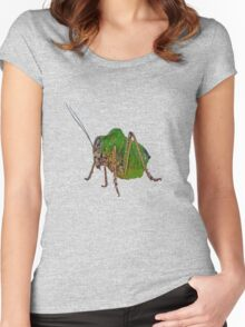 Katydid Vector On A Black Background Women's Fitted Scoop T-Shirt
