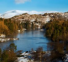 Tarn Hows Lake District Cumbria by eddiej