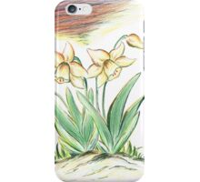 Glorious Daffodils iPhone Case/Skin