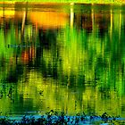 Green Reflection by Ginger  Barritt