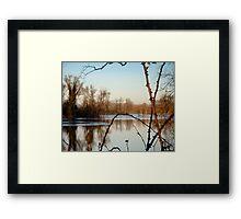 Winter Thorns  Framed Print