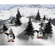happy penguins Photographic Print