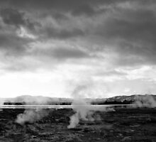 Prehistoric Landscape - Rotorua, New Zealand by Norman Repacholi