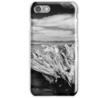 Driftwood, New Zealand iPhone Case/Skin