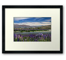 Lupin lined Ahuriri River - NZ Framed Print