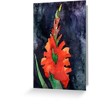 watercolor drawing of red gladiolus Greeting Card