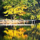 Autumn Morning ©DApixara by capecodart