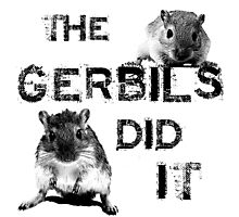 The Gerbils Did It Photographic Print