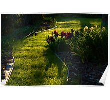 Green Garden Path - Impressions Of Spring Poster