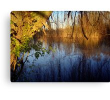 Willow Reflections Canvas Print