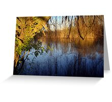 Willow Reflections Greeting Card