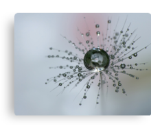 Dandelion Drop Ball Canvas Print