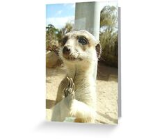 Through the Looking Glass ... Greeting Card