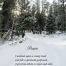 Peace Poem Winter Road by Zehda