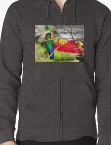 Sneaking Up On An Irazu Hummingbird T-Shirt