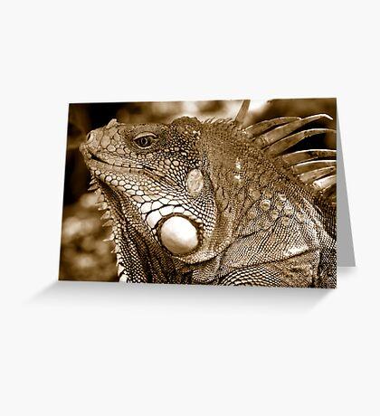 Big Iguana Greeting Card