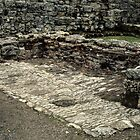 Probable food storage area Ruins of abbey Rievaulx North Yorkshire England 198406020066 by Fred Mitchell