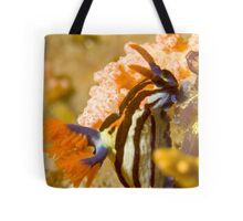 Nembrotha Purpureolineolate Nudibranch Tote Bag