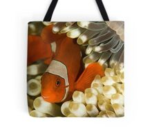 Clown Fish in Anemone Tote Bag