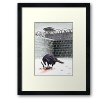 Crow, Bloody Snow Framed Print