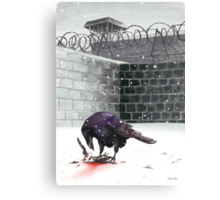 Crow, Bloody Snow Canvas Print