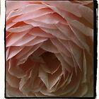 pink ruffles by scarlettheartt