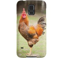 beautiful young Rhode Island Red cock Samsung Galaxy Case/Skin