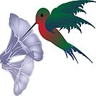 humming bird and morning glory by michelle bergkamp