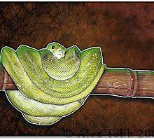 Green Snake by Alex Tebb