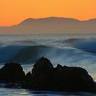 SEA OF COLOUR by Donovan Wilson