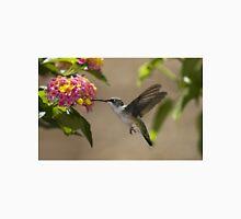 hummingbird Unisex T-Shirt