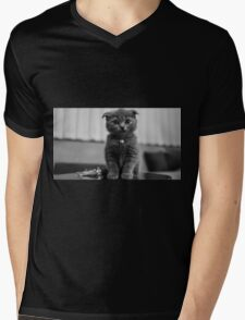 Kitten Mens V-Neck T-Shirt