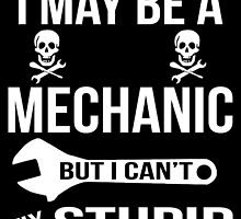 I May Be A Mechanic But I Can'y Fix Stupid by birthdaytees