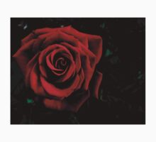 Red Rose in the Dark Baby Tee