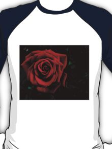 Red Rose in the Dark T-Shirt