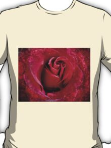 Red Rose in the Dark 2 T-Shirt