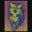 Psychedelic Kitty (Remaster) by pocketsoup