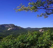 Whiteside Mountain, North Carolina by Karen Kaleta