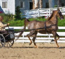 Impasto-stylized photo of a senior woman driving horse and carriage in show arena by NaturaLight