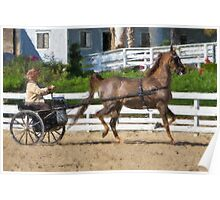 Impasto-stylized photo of a senior woman driving horse and carriage in show arena Poster