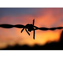 Barbed Silhouette Photographic Print