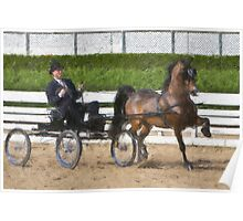 Impasto-stylized photo of a man driving horse and carriage in show arena Poster