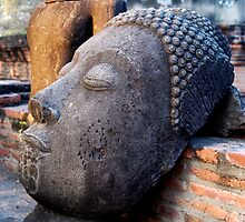 Discarded Buddha by Dave Lloyd