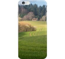 House on the hillside iPhone Case/Skin