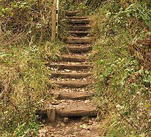 Rustic Steps by Franco De Luca Calce