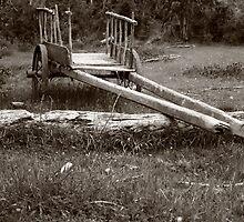 Abandoned tumbril. by Francisco Larrea