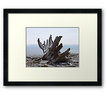 Final Landfall Framed Print