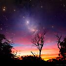 Tree Nebula by dale rogers