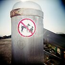 No Cats or Dogs by Leanne Smith