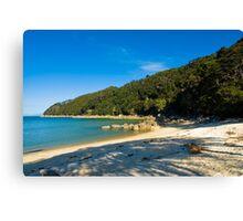 abel tasman Canvas Print